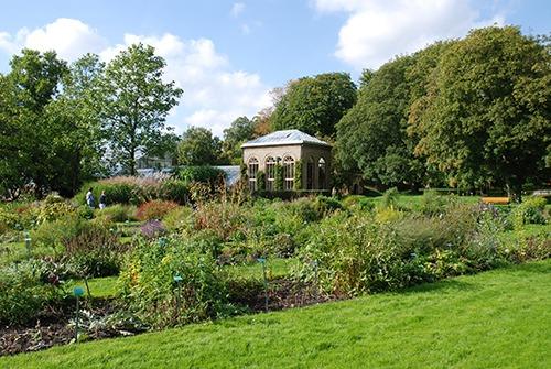 Lundcity-Lund-botaniska-tradgarden